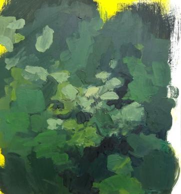 "Bush Study 10"" x 11"" Oil on Paper 2017"